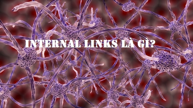 Tìm hiểu internal links