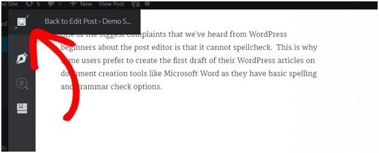 sử dụng grammarly để check lỗi chính tả