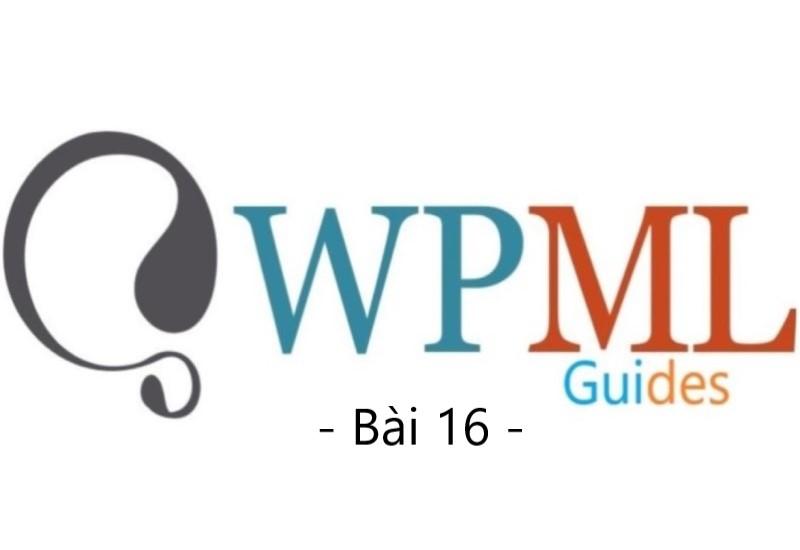 wpml guide bai 16