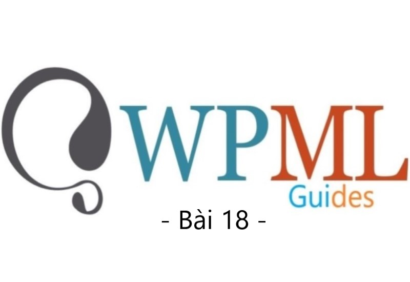 wpml guide bai 18